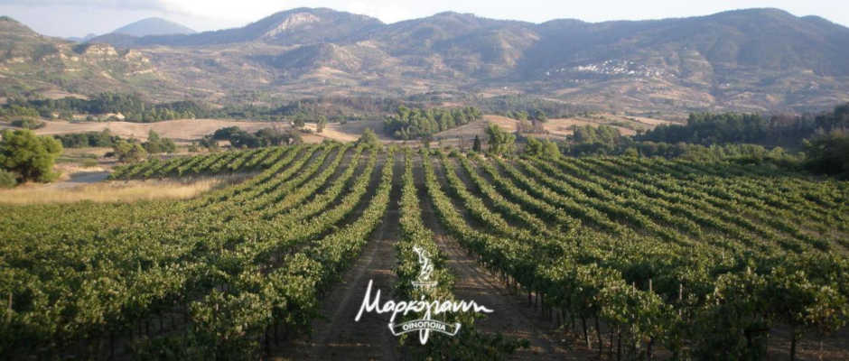 ΟΙΝΟΠΟΙΙΑ ΜΑΡΚΟΓΙΑΝΝΗ | www.oinognosia.wine